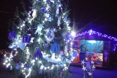 2016_albero-alpini-notte