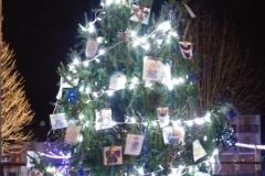 2016_albero-catechismo-notte