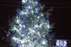 2016_albero-edicola-notte