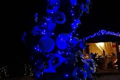 albero_alpini_notte