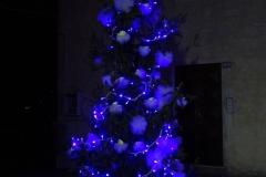 albero_edicola_notte