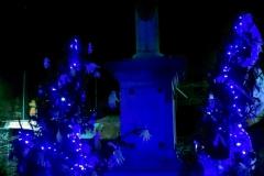 albero_leserre_notte