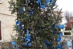 albero_proloco