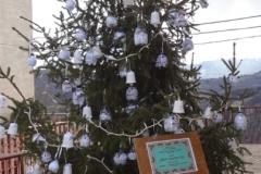 albero_scuola
