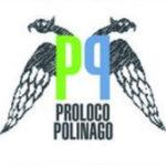 Proloco Polinago